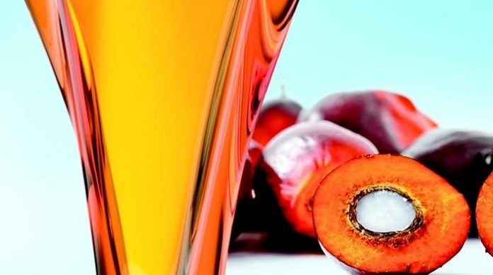 EU food safety body to look again at palm oil health risks